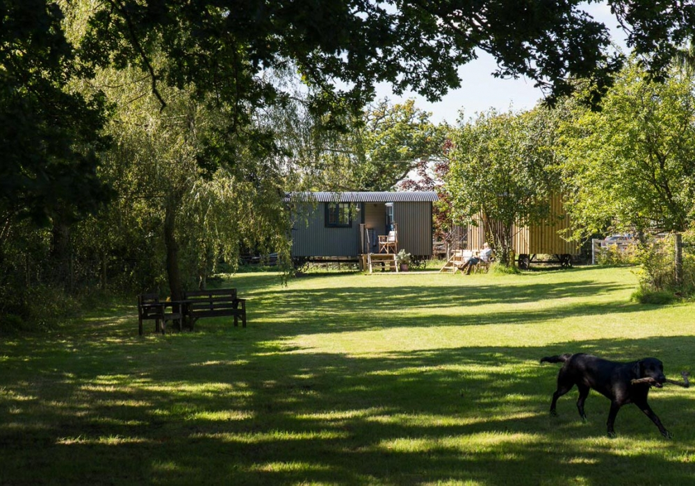 The Shepherds Hut in the Orchard
